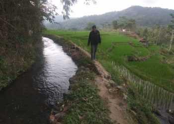 RUSAK: Talud irigasi Susukan di Desa Ajibarang Kulon, Kecamatan Ajibarang rusak dan mendesak diperbaiki.