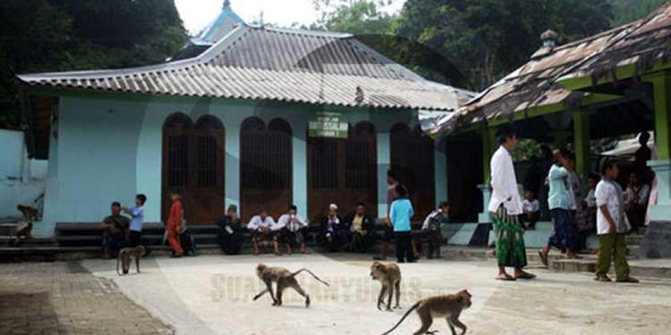 BERZIARAH: Puluhan pengunjung berziarah di Masjid Saka Tunggal, Desa Cikakak, Kecamatan Wangon, Banyumas, beberapa waktu lalu. (SM/Nugroho PS-37)