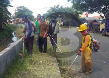 MENINJAU: Bupati Banjarnegara Budhi Sarwono meninjau proses pemangkasan rumput liar yang menutupi permukaan trotoar di kompleks Stadion Soemitro Kolopaking. (SM/Castro Suwito-52)