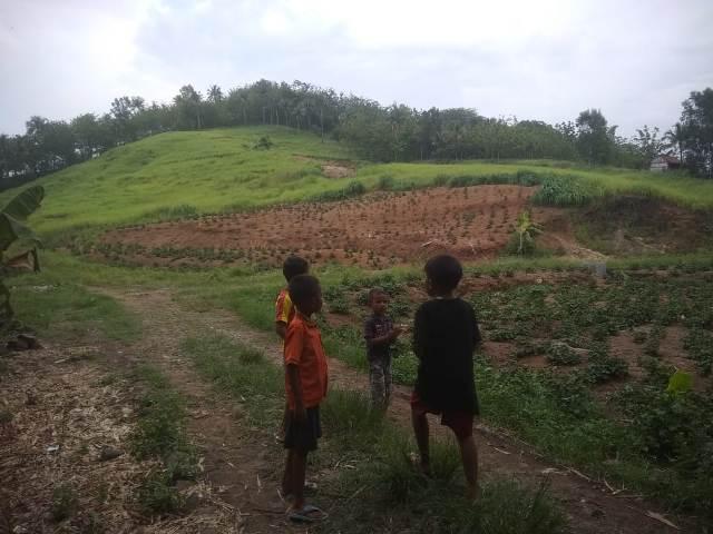 AKAN DIPAPRAS: Lokasi lahan milik Pemkab Banyumas di Dusun Saktimadukara, Desa Randegan, Kecamatan Wangon yang akan dipapras jika rencana pembangunan pabrik garmen di lokasi ini terealisasi.(SM/Susanto)