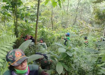 MENCARI KORBAN: Personel Banser Kecamatan Karanglewas menelusuri hutan untuk mencari orang hilang warga Dusun Semaya, Desa Sunyalangu, Kecamatan Karanglewas, kemarin (12/4).