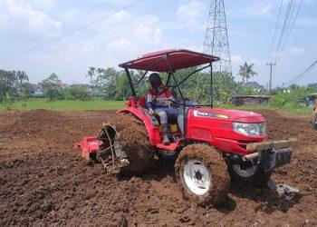 MENGEMUDIKAN TRAKTOR : Vera (19), gadis belia mengemudikan traktor untuk mengolah lahan sawah. (SM/Puji Purwanto)