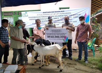 SERAHKAN BANTUAN: PT PLN (Persero) Unit Induk Jawa Bagian Tengah menyerahkan bantuan CSR berupa 24 ekor kambing kepada Kelompok Tani Makmur Desa Luwung Kecamatan Rakit untuk memberdayakan ekonomi warga di sekitar SUTT.